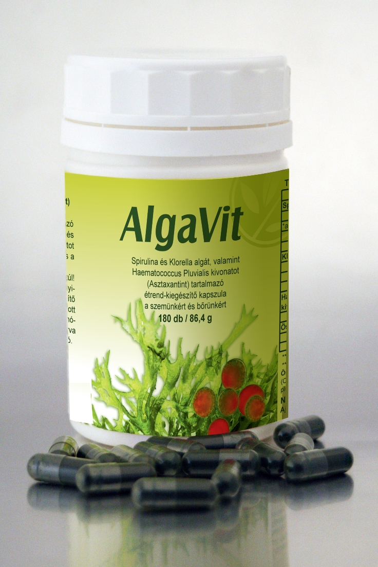 AlgaVitbogyo copy